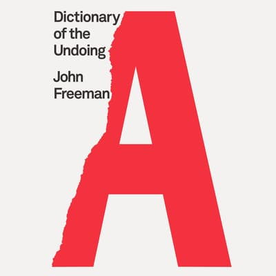 Dictionary of the Undoing by John Freeman audiobook