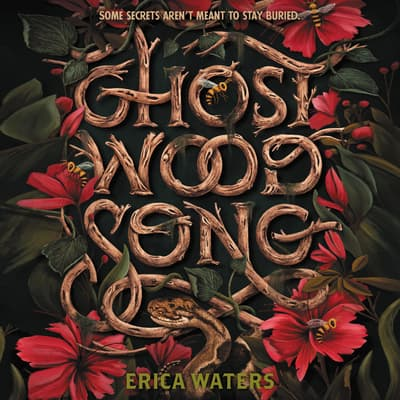 Ghost Wood Song by Erica Waters audiobook