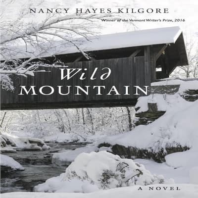 Wild Mountain by Nancy Hayes Kilgore audiobook