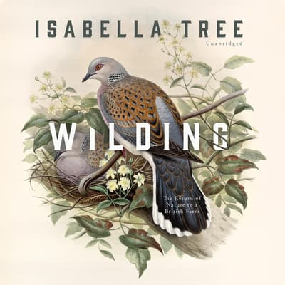Wilding by Isabella Tree audiobook