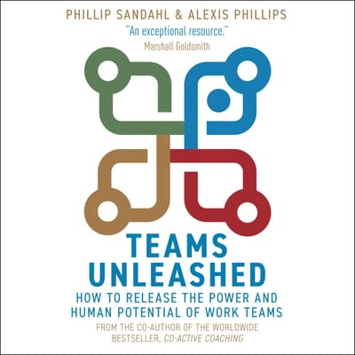 Teams Unleashed by Phillip Sandahl audiobook