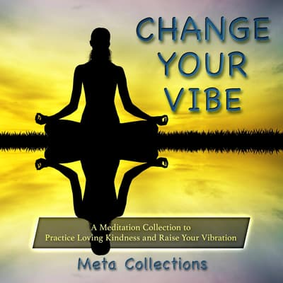 Change Your Vibe by Meta Collections audiobook
