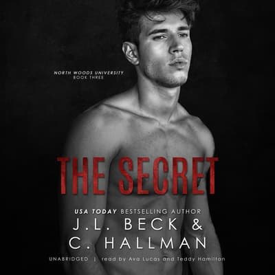 The Secret by J. L. Beck audiobook