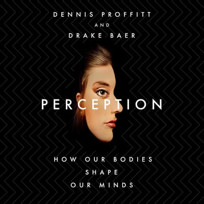 Perception by Drake Baer audiobook