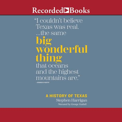 Big Wonderful Thing by Stephen Harrigan audiobook