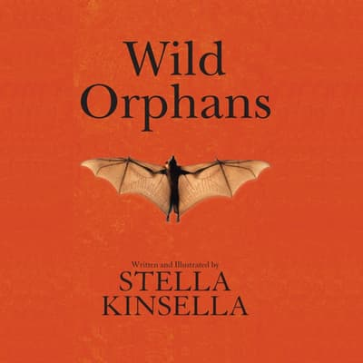 Wild Orphans by Stella Kinsella audiobook