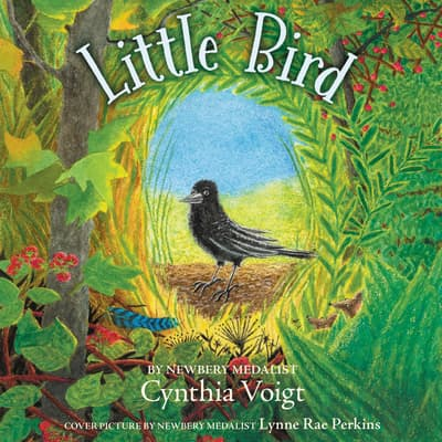 Little Bird by Cynthia Voigt audiobook