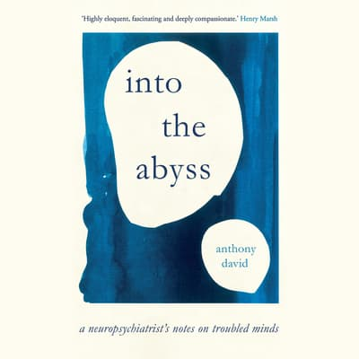 Into the Abyss by Anthony David audiobook