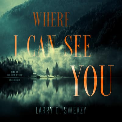 Where I Can See You by Larry D. Sweazy audiobook