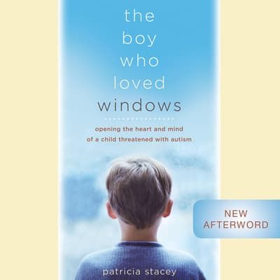 The Boy Who Loved Windows by Patricia Stacey audiobook