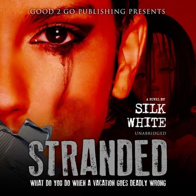 Stranded by Silk White audiobook