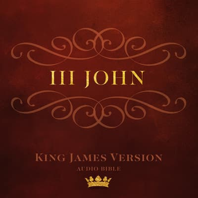 Book of III John by  audiobook
