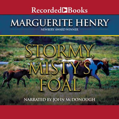 Stormy, Misty's Foal by Marguerite Henry audiobook