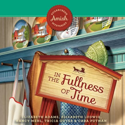 In the Fullness of Time by Nancy Mehl audiobook