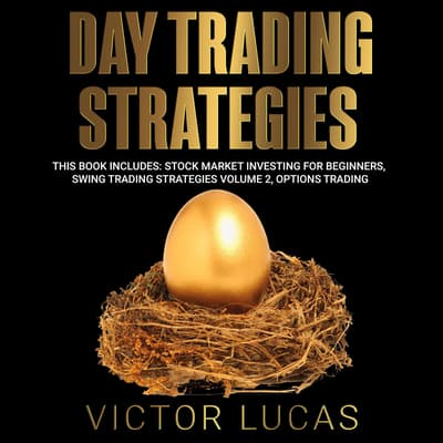 Day Trading Strategies by Victor Lucas audiobook