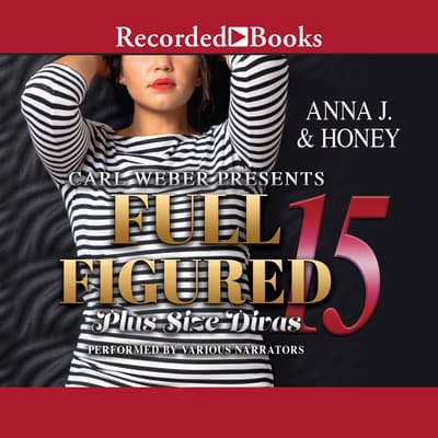 Full Figured 15 by Anna J. audiobook