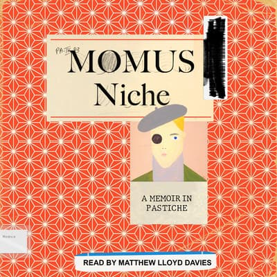 Niche by Momus  audiobook