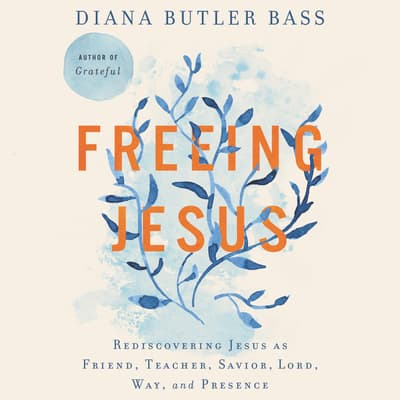 Freeing Jesus by Diana Butler Bass audiobook
