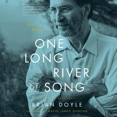 One Long River of Song by Brian Doyle audiobook