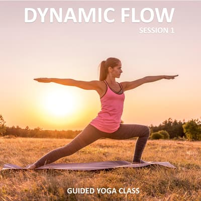 Dynamic Flow Session 1 by Sue Fuller audiobook