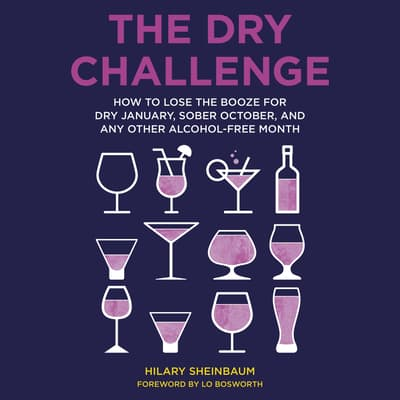 The Dry Challenge by Hilary Sheinbaum audiobook