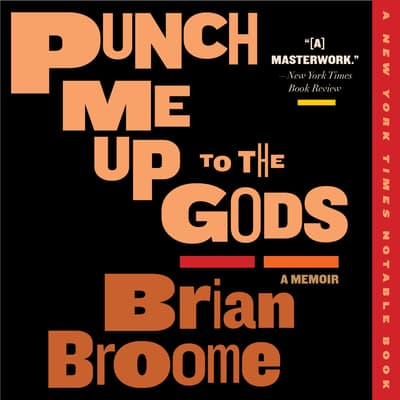 Punch Me Up to the Gods by Brian Broome audiobook