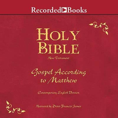 Holy Bible Gospel According To Matthew Volume 22 by Various  audiobook