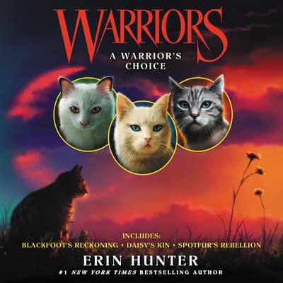 Warriors: A Warrior's Choice by Erin Hunter audiobook