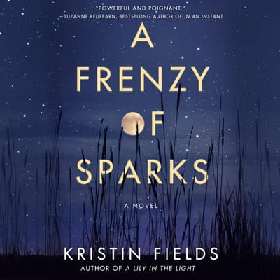 A Frenzy of Sparks by Kristin Fields audiobook