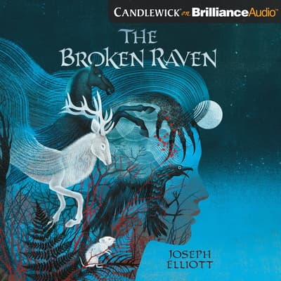 The Broken Raven by Joseph Elliott audiobook