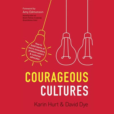 Courageous Cultures by Karin Hurt audiobook