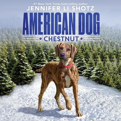 Chestnut by Jennifer Li Shotz audiobook