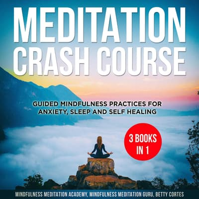 Meditation Crash Course - 3 Books in 1:  by Mindfulness Meditation Academy audiobook