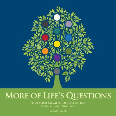 More of Life's Questions: Spiritual Development V3 by Elsabe Smit audiobook