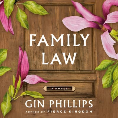 Family Law by Gin Phillips audiobook