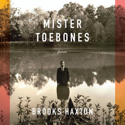Mister Toebones by Brooks Haxton audiobook