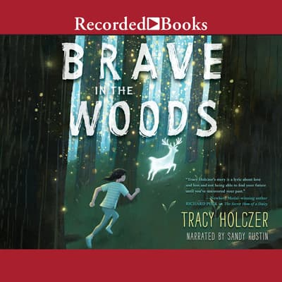 Brave in the Woods by Tracy Holczer audiobook