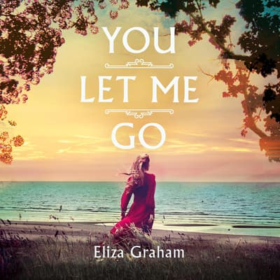 You Let Me Go by Eliza Graham audiobook